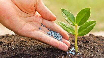 Подкормка весной – виды удобрений для сада и огорода