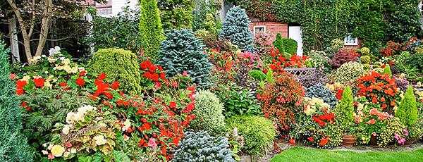 Планируем сад правильно – как избежать бесконечных переделок
