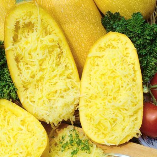 Кабачок спагетти Порционный F1 изображение 2 артикул 65333