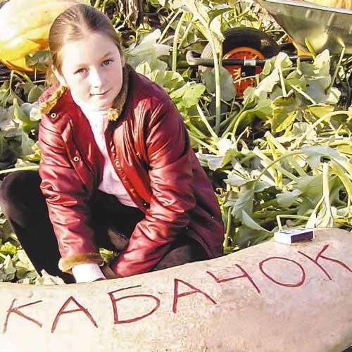 Кабачок зимний Русский Размер изображение 1 артикул 69884