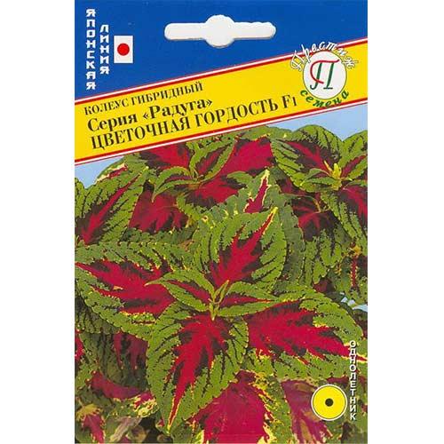 Колеус Радуга Цветочная гордость F1 изображение 1 артикул 71451