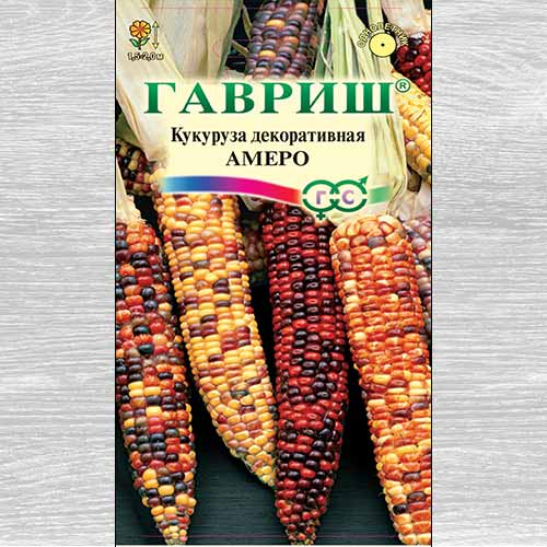 Кукуруза декоративная Амеро, смесь окрасок изображение 1 артикул 73861