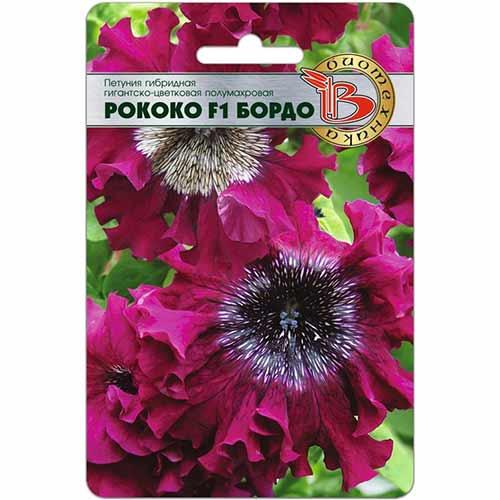 Петуния гигантско-цветковая Рококо Бордо F1 изображение 1 артикул 74107