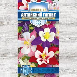 Аквилегия Алтайский гигант, смесь окрасок изображение 1