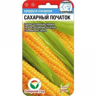 Кукуруза Сахарный початок изображение 4