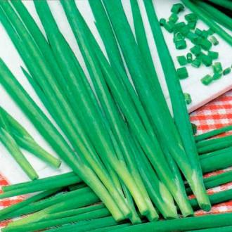 Лук на зелень Энерджи изображение 5