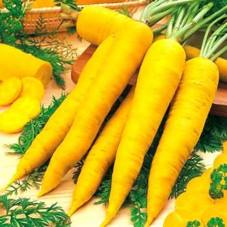 Морковь Карамель желтая