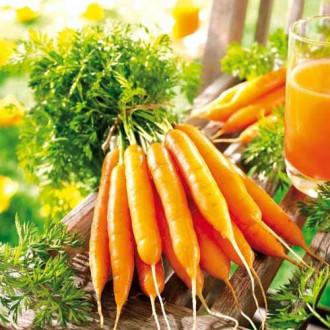 Морковь сахарная Лакомка F1