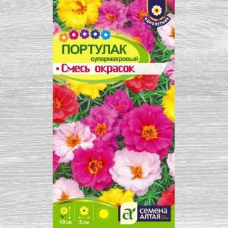 Портулак Супермахровый, смесь окрасок изображение 4