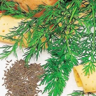 Тмин Аппетитный овощной изображение 1