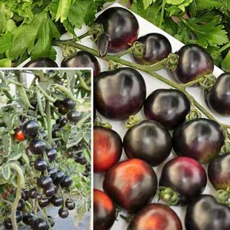 Томат Черная гроздь F1 изображение 1