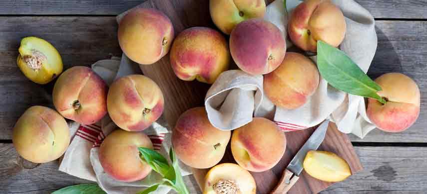Правила посадки персика фото 6